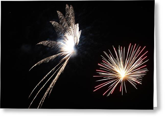Pyrotechnics Greeting Cards - Butterfly and Flower Fireworks Greeting Card by Howard Tenke