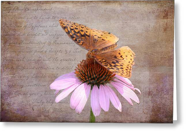 Kim Klassen Texture Greeting Cards - Butterfly and Flower Greeting Card by KJ DeWaal