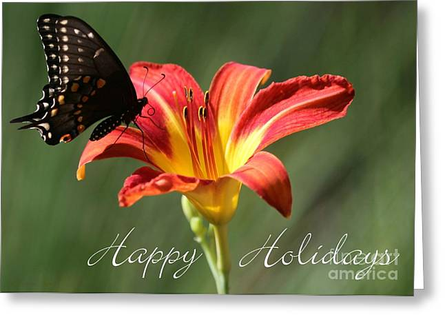 Day Lily Greeting Cards - Butterfly and Lily Holiday Card Greeting Card by Sabrina L Ryan