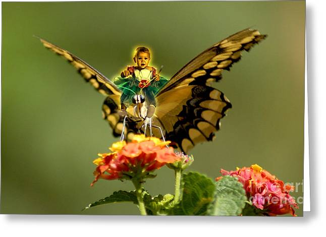 Creative Manipulation Digital Greeting Cards - Butterfly and little Girl Greeting Card by Artist Nandika  Dutt