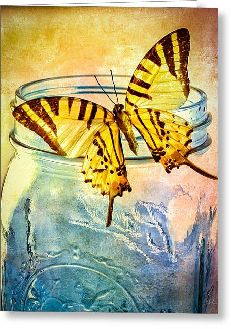 Meditate Greeting Cards - Butterfly Blue Glass Jar Greeting Card by Bob Orsillo
