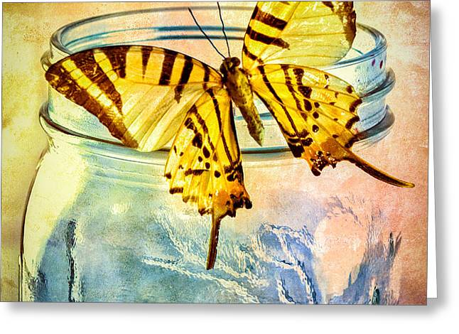 Butterfly Blue Glass Jar Greeting Card by Bob Orsillo