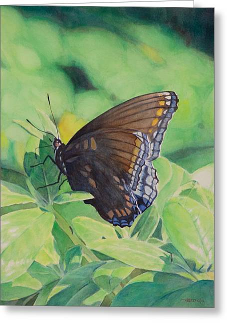 Insect Greeting Cards - Butterfly Greeting Card by Christopher Reid