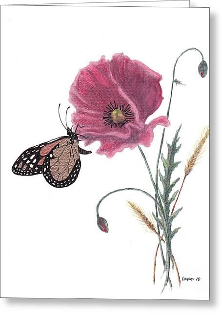 Personal Mixed Media Greeting Cards - Butterfly Dreaming Greeting Card by Stanza Widen