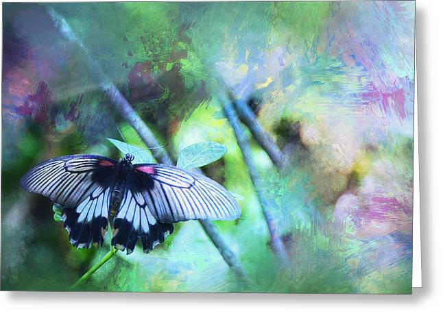 Analogous Greeting Cards - Butterfly Dreams Greeting Card by Carla Parris