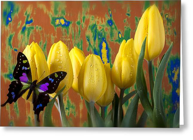 Black Wings Greeting Cards - Butterfly Dreams Greeting Card by Garry Gay