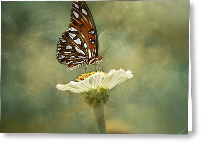 Butterfly Dreams Greeting Card by Kim Hojnacki
