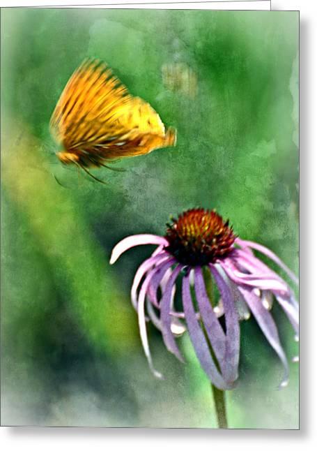 Butterfly In Flight Greeting Card by Marty Koch