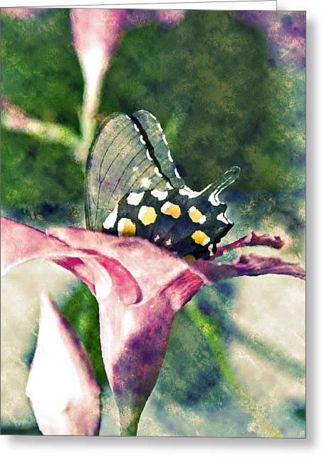 Susan Leggett Digital Greeting Cards - Butterfly in Flower Greeting Card by Susan Leggett