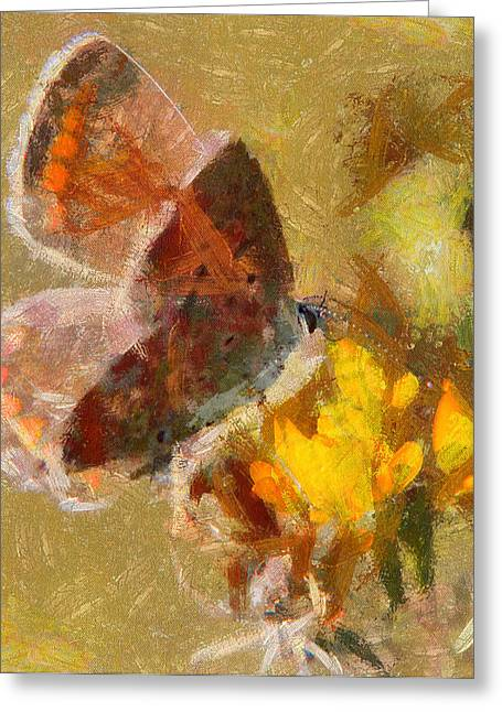 Butterfly Life Greeting Card by Yury Malkov