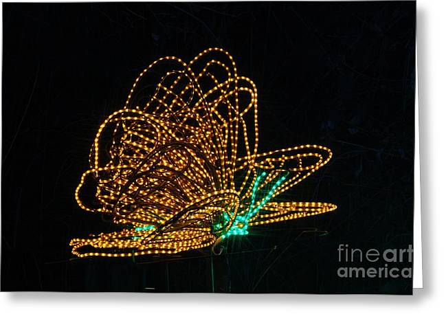 Christmas Lights Greeting Cards - Butterfly Greeting Card by Mandy Judson