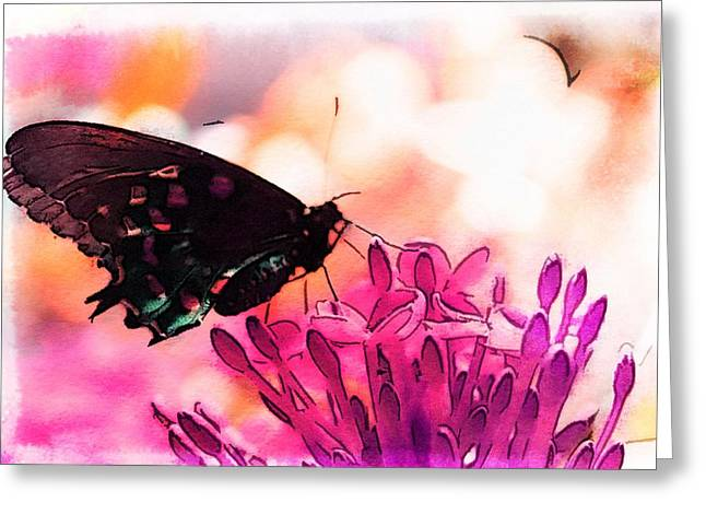 Lilac Greeting Cards - Breathing Into the Sunlight Greeting Card by Marianna Mills