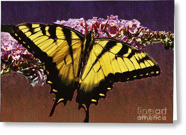 Tiger Swallowtail Digital Art Greeting Cards - Yellow Tiger Swallowtail Butterfly Greeting Card by Carol F Austin