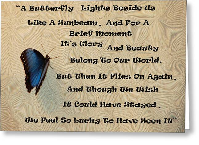 Butterfly Poem Greeting Card by Aimee L Maher Photography and Art Visit ALMGallerydotcom