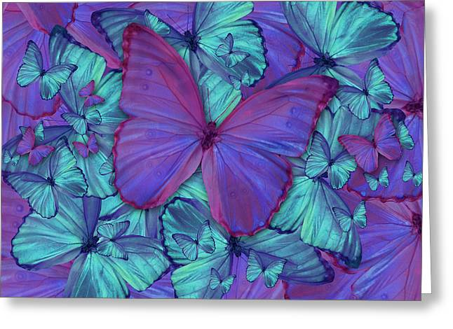 Euphoria Greeting Cards - Butterfly Radial Violetmorpheus Greeting Card by Alixandra Mullins