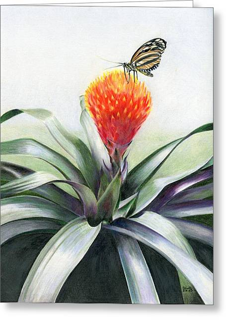 Bromeliad Greeting Cards - Butterfly Sunning in Costa Rica Greeting Card by Penrith Goff