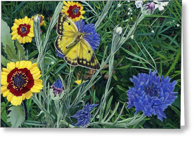 Butterfly Wildflowers spring time garden floral oil painting green yellow Greeting Card by Walt Curlee