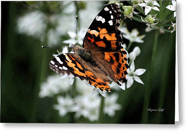 Floral Digital Art Greeting Cards - Butterfly World II Greeting Card by Suzanne Gaff