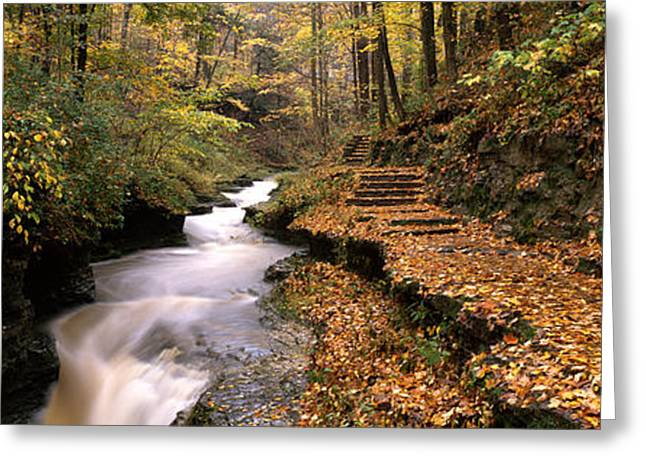 Buttermilk Falls Greeting Cards - Buttermilk Creek, Ithaca, New York Greeting Card by Panoramic Images
