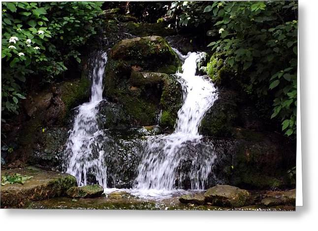 Buttermilk Falls Greeting Cards - Buttermilk Falls Greeting Card by James S Stover