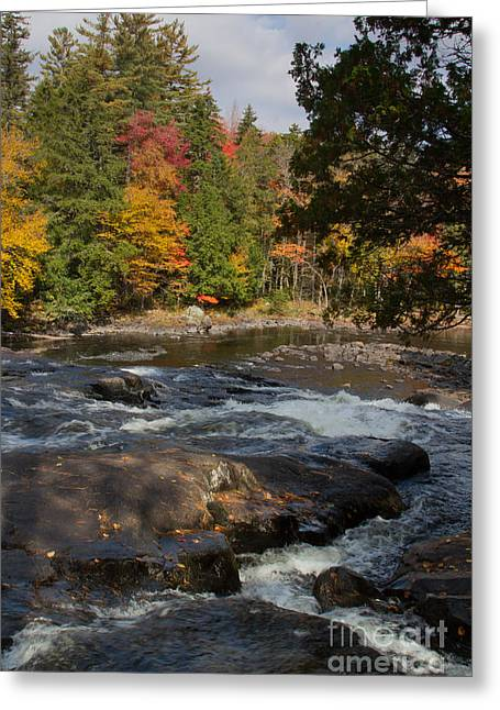 Canoe Waterfall Photographs Greeting Cards - Buttermilk Falls NY Greeting Card by Chris Scroggins