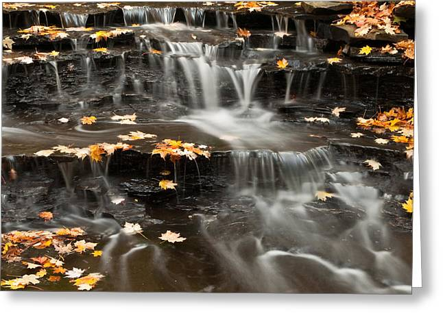 Buttermilk Falls Greeting Cards - Buttermilk Falls Greeting Card by Shannon Workman