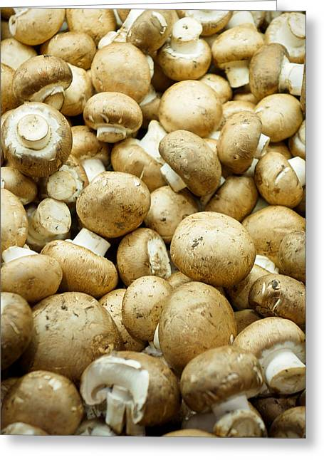 Button Mushrooms Greeting Cards - Button Mushrooms Greeting Card by Robert Meyers-Lussier