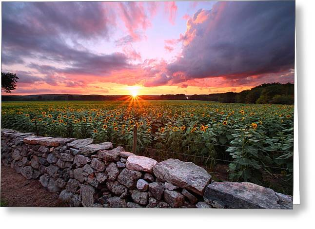 Griswold Connecticut Greeting Cards - Buttonwood Farm Sunset Greeting Card by Andrea Galiffi