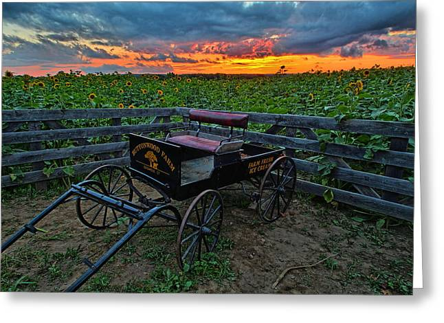 Griswold Connecticut Greeting Cards - Buttonwood Farm Wagon Greeting Card by Andrea Galiffi