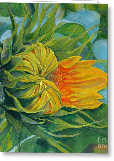 Buttonwood Farm Greeting Cards - Buttonwood Sunflower Greeting Card by Amy White