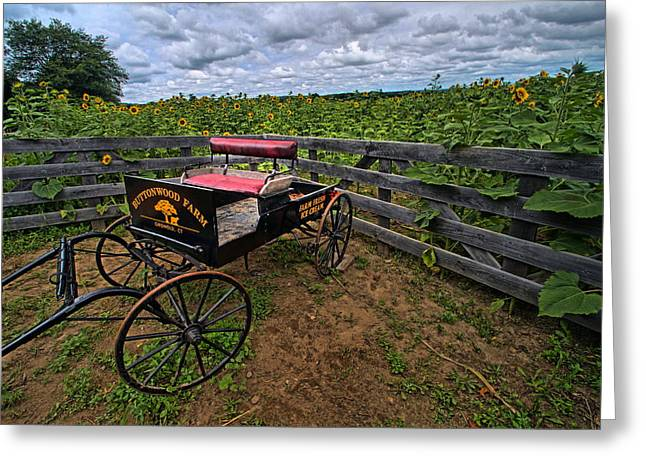 Griswold Connecticut Greeting Cards - Buttonwood Wagon Greeting Card by Andrea Galiffi