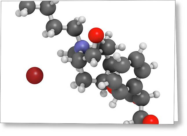 Butylscopolamine Drug Molecule Greeting Card by Molekuul
