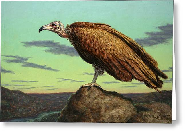 Buzzard Rock Greeting Card by James W Johnson
