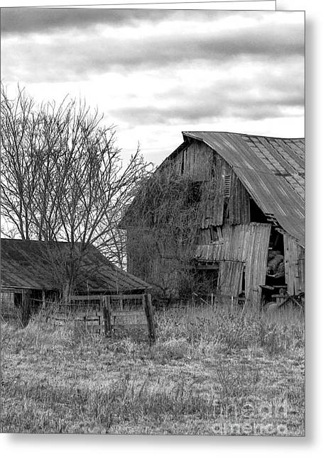 Barn Yard Greeting Cards - BW Old Barn and Shed Cloudy Winter Day No1 Greeting Card by Rick Grisolano Photography LLC