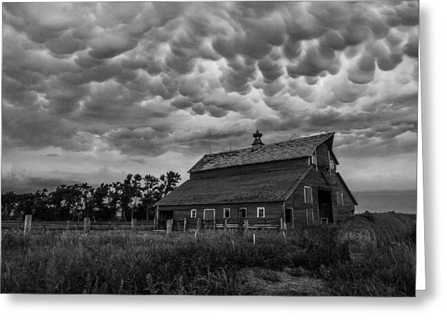 Severe Greeting Cards - BWCday3 Take Shelter  Greeting Card by Aaron J Groen
