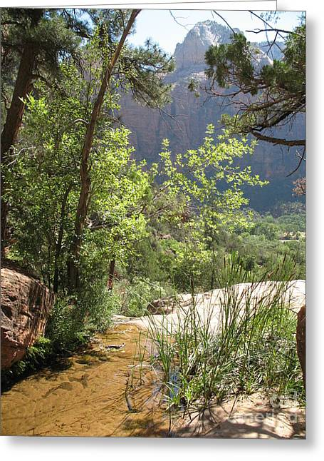 Christiane Schulze Greeting Cards - By The Emerald Pools - Zion NP Greeting Card by Christiane Schulze Art And Photography