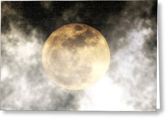Harvest Moon Greeting Cards - By the Light of the Moon Greeting Card by Bill Cannon