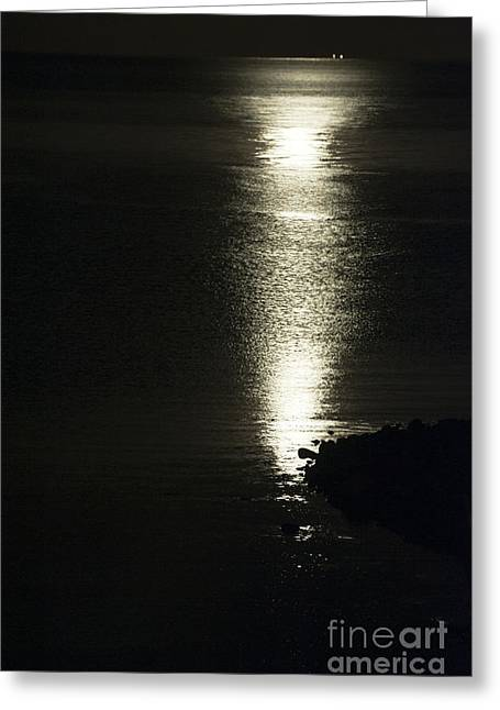 Sea Moon Full Moon Greeting Cards - By the Light of the Silvery Moon Greeting Card by Anne Gilbert