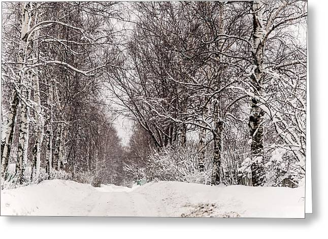 First Snow Greeting Cards - By the Snowy Path. Russia Greeting Card by Jenny Rainbow