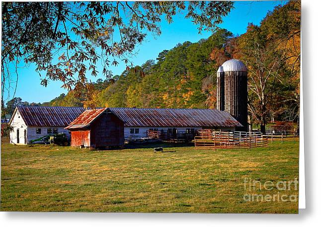 Dairy Barn Greeting Cards - Byce Dairy Barn in Greene County                                                                 Greeting Card by Reid Callaway