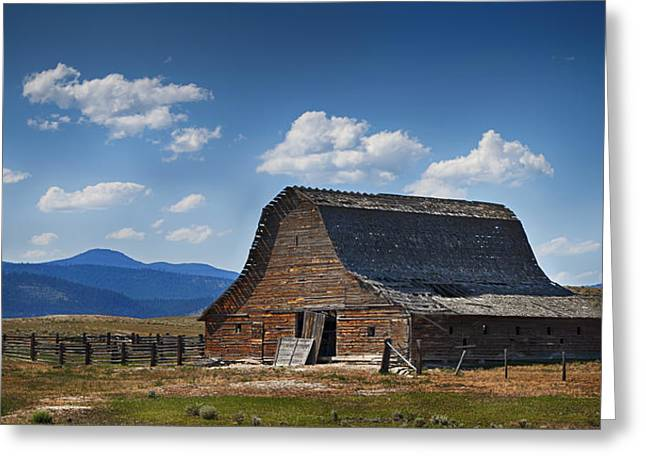 Dilapidated Greeting Cards - Bygone Days Barn Greeting Card by Mary Jo Allen