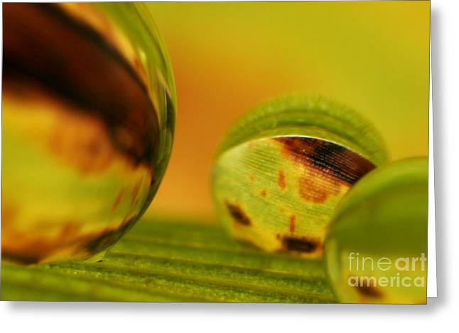 C Ribet Orbscape 0841 Greeting Card by C Ribet