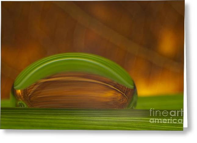 Glowing Greeting Cards - C Ribet Orbscape Mysterious Haste Greeting Card by C Ribet
