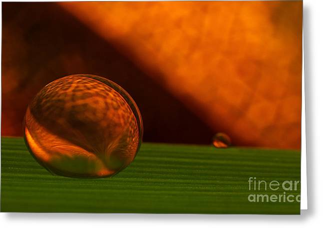 Contemporary Greeting Cards - C Ribet Orbscape Sphere of Genesis Greeting Card by C Ribet