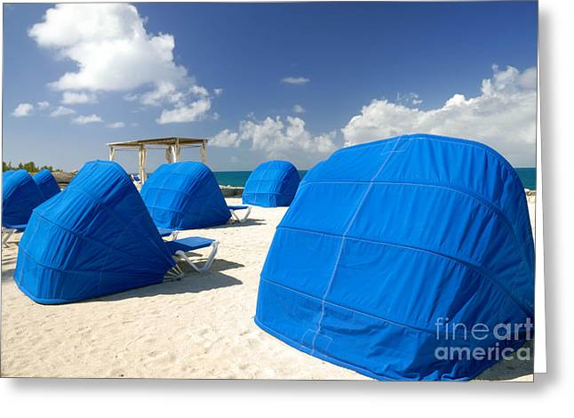Relaxation Greeting Cards - Cabanas on the Beach Greeting Card by Amy Cicconi