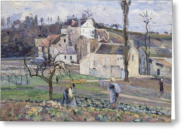 Camille Pissarro Greeting Cards - Cabbage Patch near the Village Greeting Card by Camille Pissarro