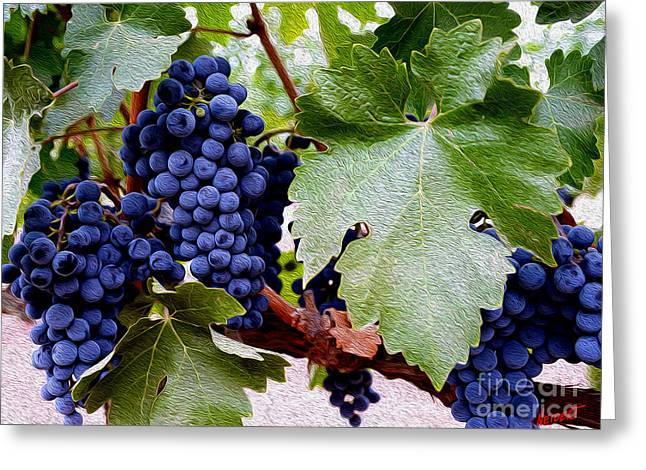 Merlot Greeting Cards - Cabernet Grapes Greeting Card by Jon Neidert