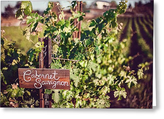 Cabernet Greeting Cards - Cabernet Vineyards Greeting Card by April Reppucci