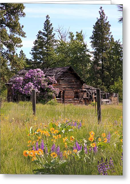 Barn Pen And Ink Greeting Cards - Cabin and Wildflowers Greeting Card by Athena Mckinzie
