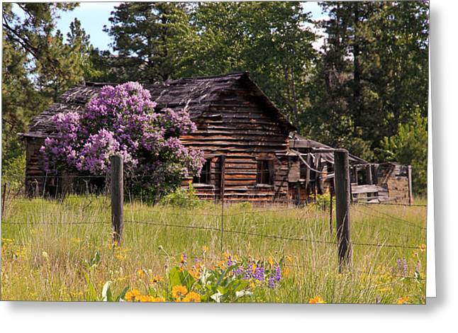 Cabin and Wildflowers Greeting Card by Athena Mckinzie